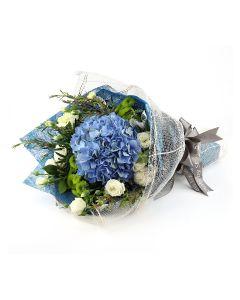 Blue Hydrangea A