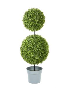 Boxwood Double-Ball Topiary Potted-48""