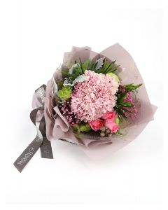 Pink Hydrangea A