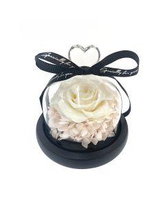 Sweet Heart-Ivory