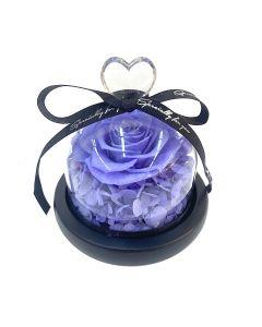 Sweet Heart B-Purple