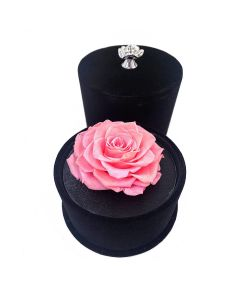 Cylinder Rose Box-Pink