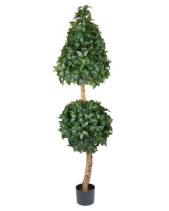 Bayleaf Double Topiary-6'